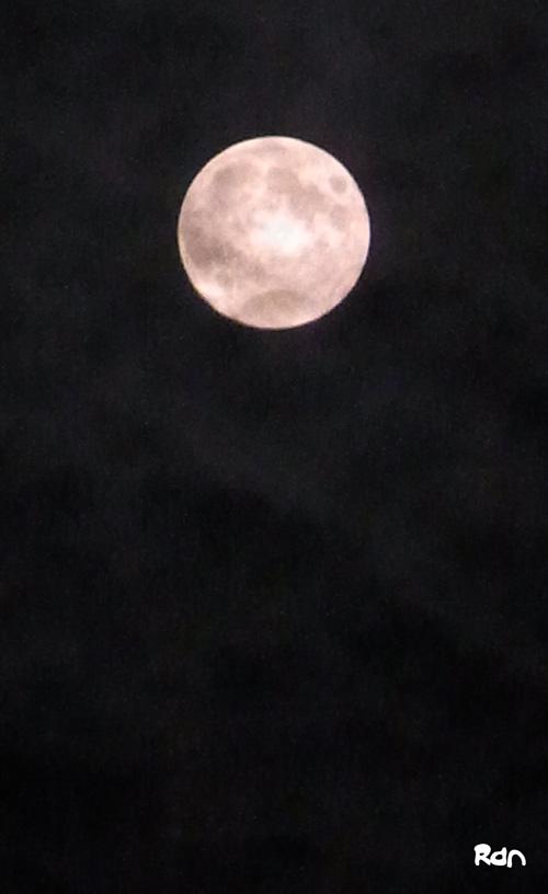 110813_moon_light.jpg