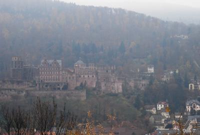 heidelberg_Philosphenweg7.jpg