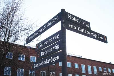sweden_winter4.jpg